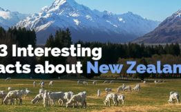 23 Interesting Facts about New Zealand