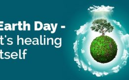 earth day - its healing itself