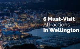6 Must Visit Attractions in Wellington New Zealand