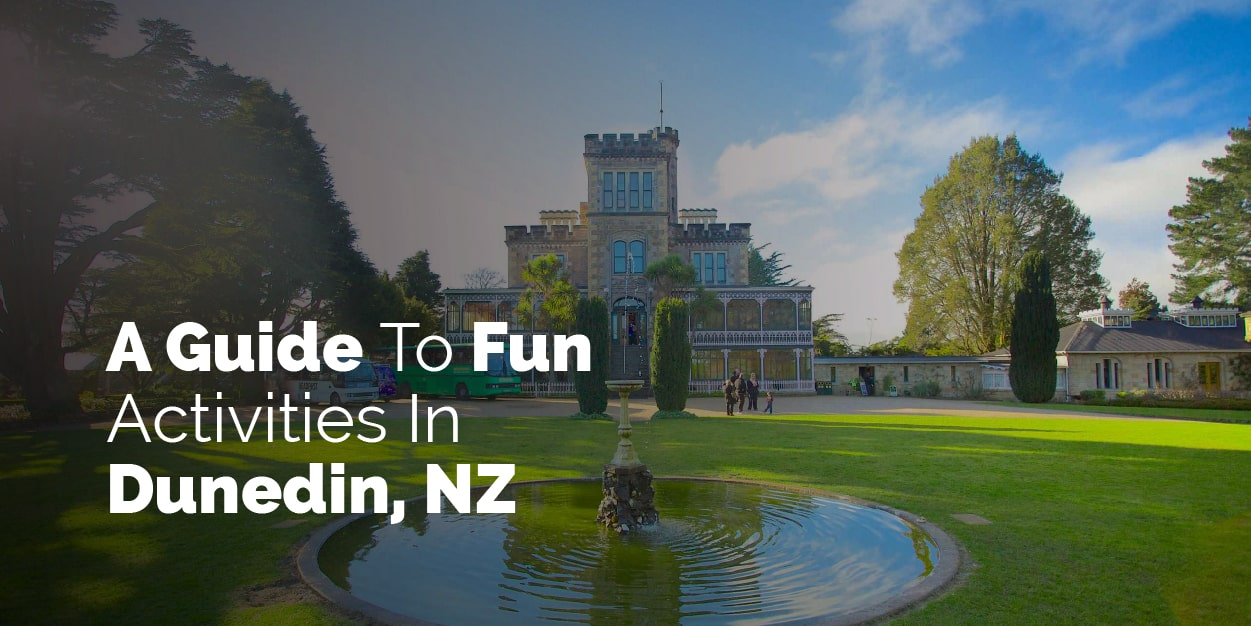 A guide to fun activities in Dunedin New Zealand