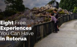 Eight free experiences you can have in rotorua