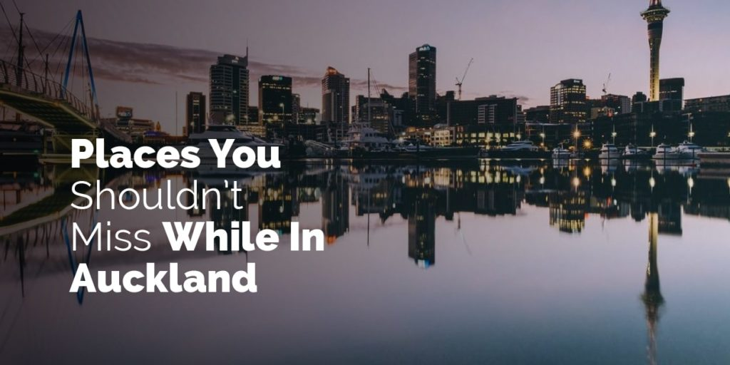 Places you shouldn't miss while in Auckland New Zealand