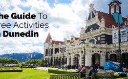 The guide to free activities in Dunedin